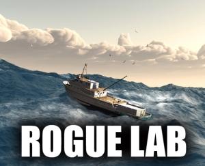 Rogue_final